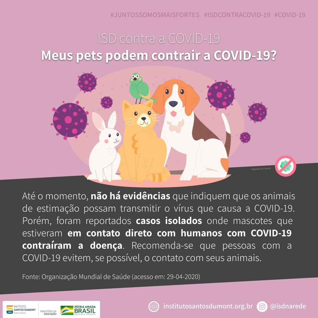 Série ISD contra a Covid-19 explica se animais de estimação podem contrair a doença